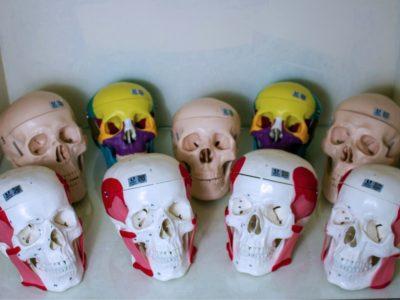 laboratorio-de-anatomia-14-1.jpg